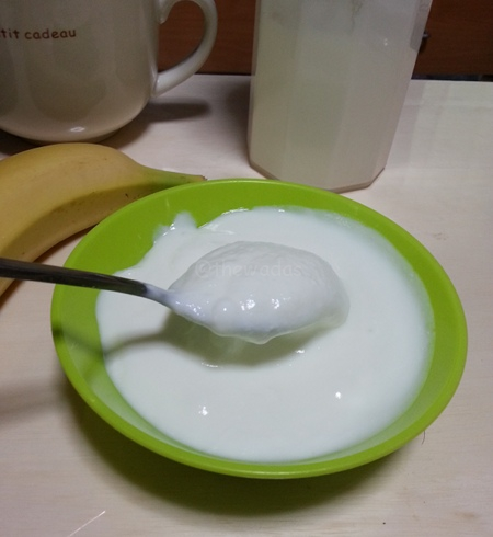 Homemade Yogurt: Result