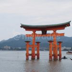 Affordable Camping in Miyajima