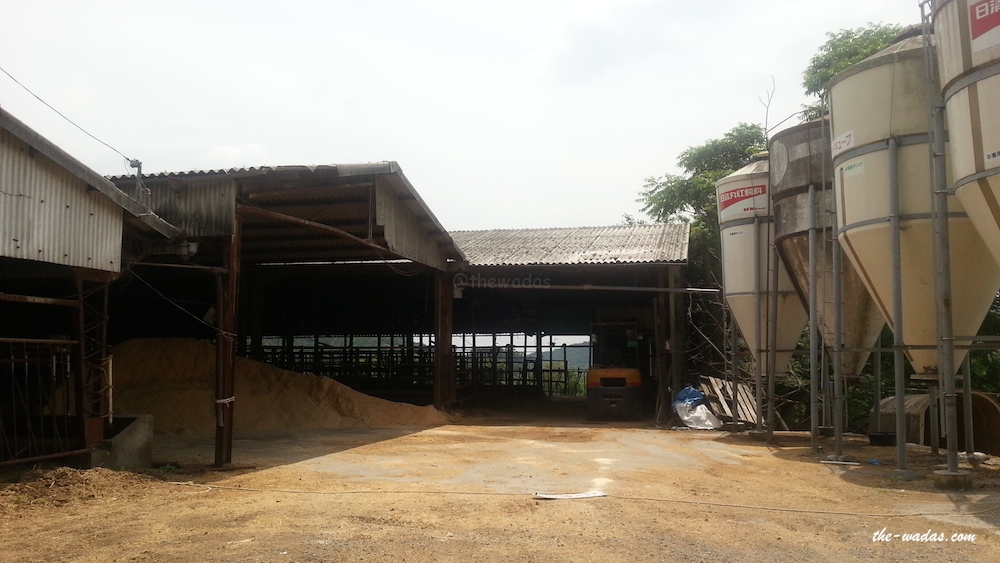 Masuda Dairy Farm, Okayama: Feeds