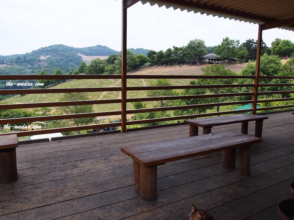 Masuda Dairy Farm, Okayama: Terrace