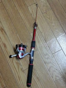 cheap_fishing_rod