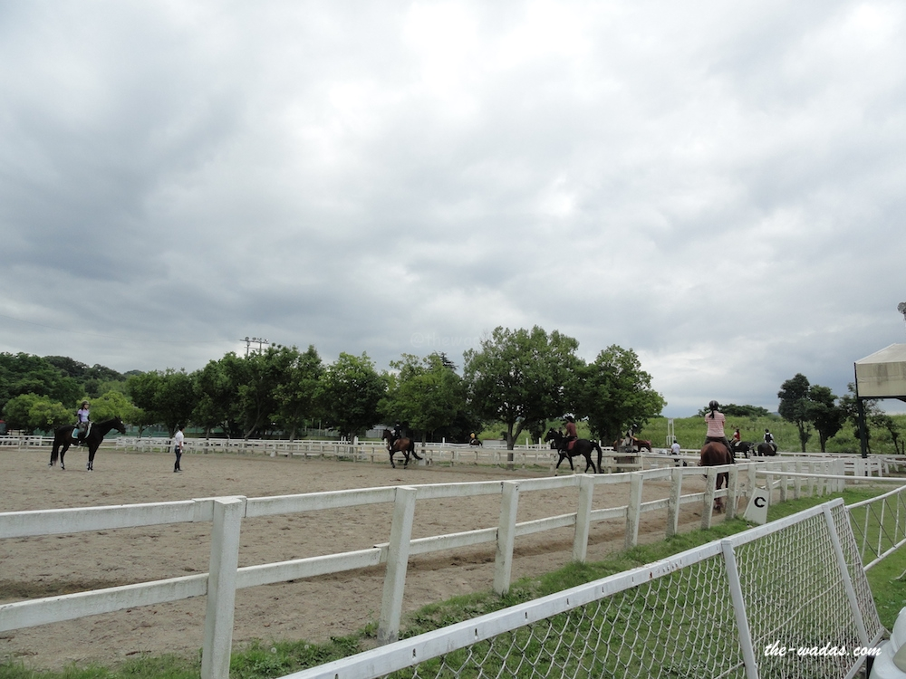 Horse Riding: Practice area