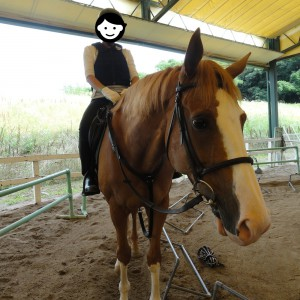 Horse Riding: Mrs. Wada's horse