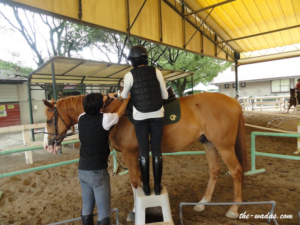 Horse Riding: Get onto the platform
