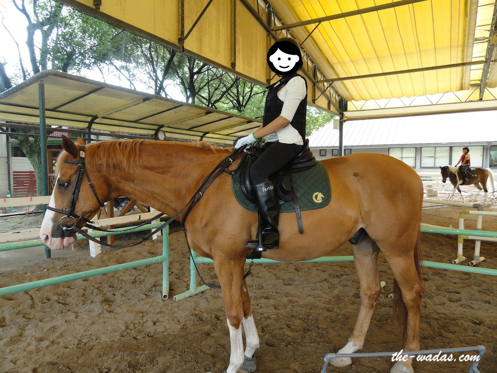 Horse Riding: Correct posture