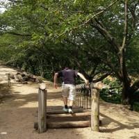 tanematsuyama_park_play_walkonlogs