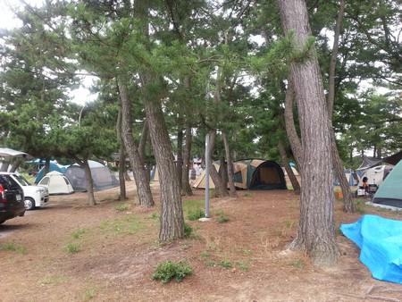 Yanagiya_campsite02