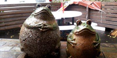Cute frog figurines in Arima