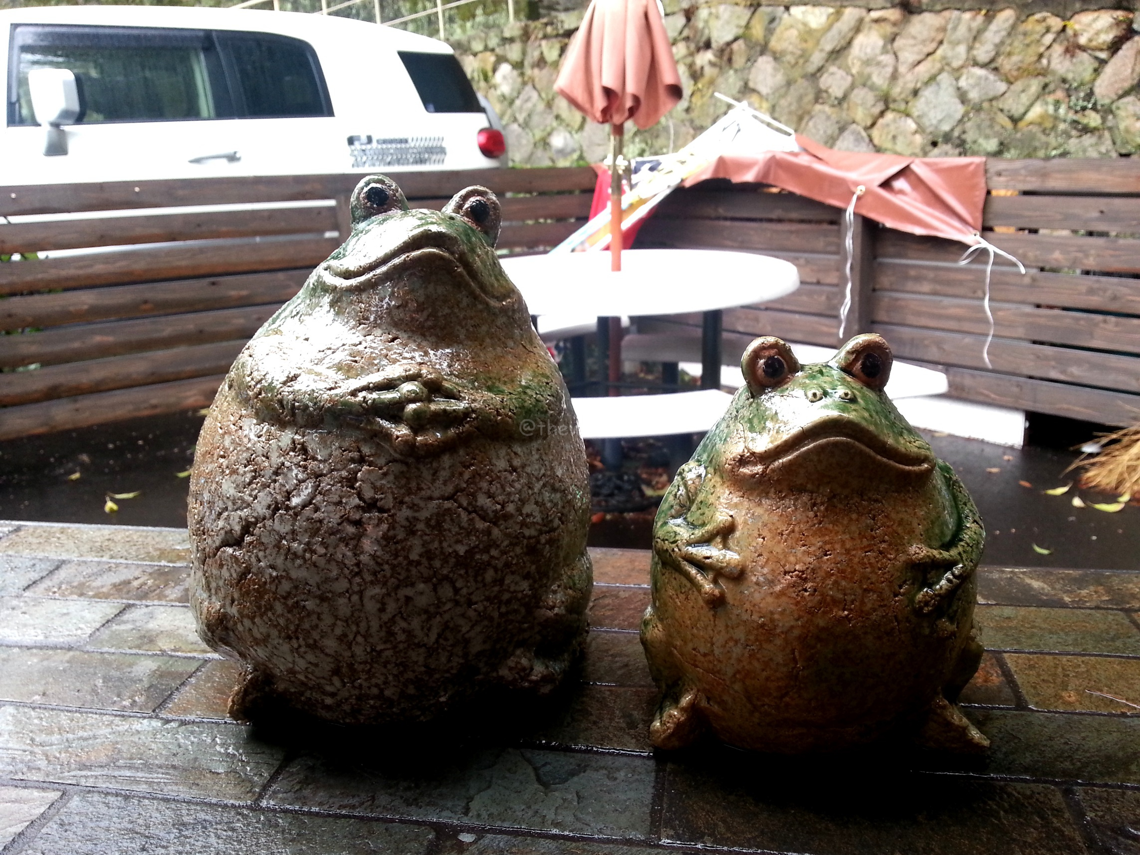 Cute frog figurines in Arima