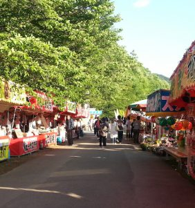 Wisteria Flower Festival, Fuji Park: food stalls