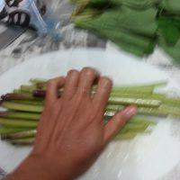 japanese_cooking_fuki_rub_salt
