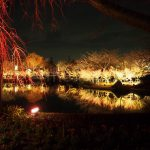 Winter Illuminations in Japan: Nabana no Sato after sunset