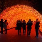 Winter Illuminations in Japan: Nabana no Sato light tunnel (red)