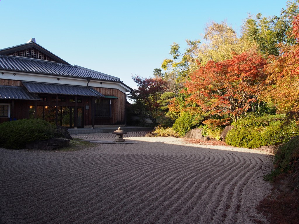 autumn leaves at inukai memorial museum in okayama