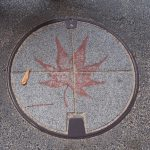 A manhole (maple leaf)