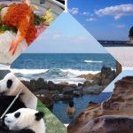 Popular Places to Go in Shirahama City, Wakayama