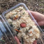 Okowa (sticky rice with veggies)