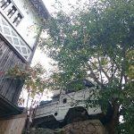 Capibara Coffee in Katsuyama: car collision