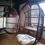 Capibara Coffee in Katsuyama: relax in a hammock