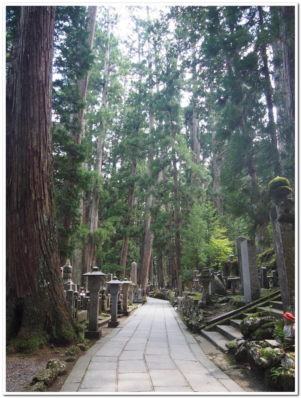 koyasan temple in wakayama