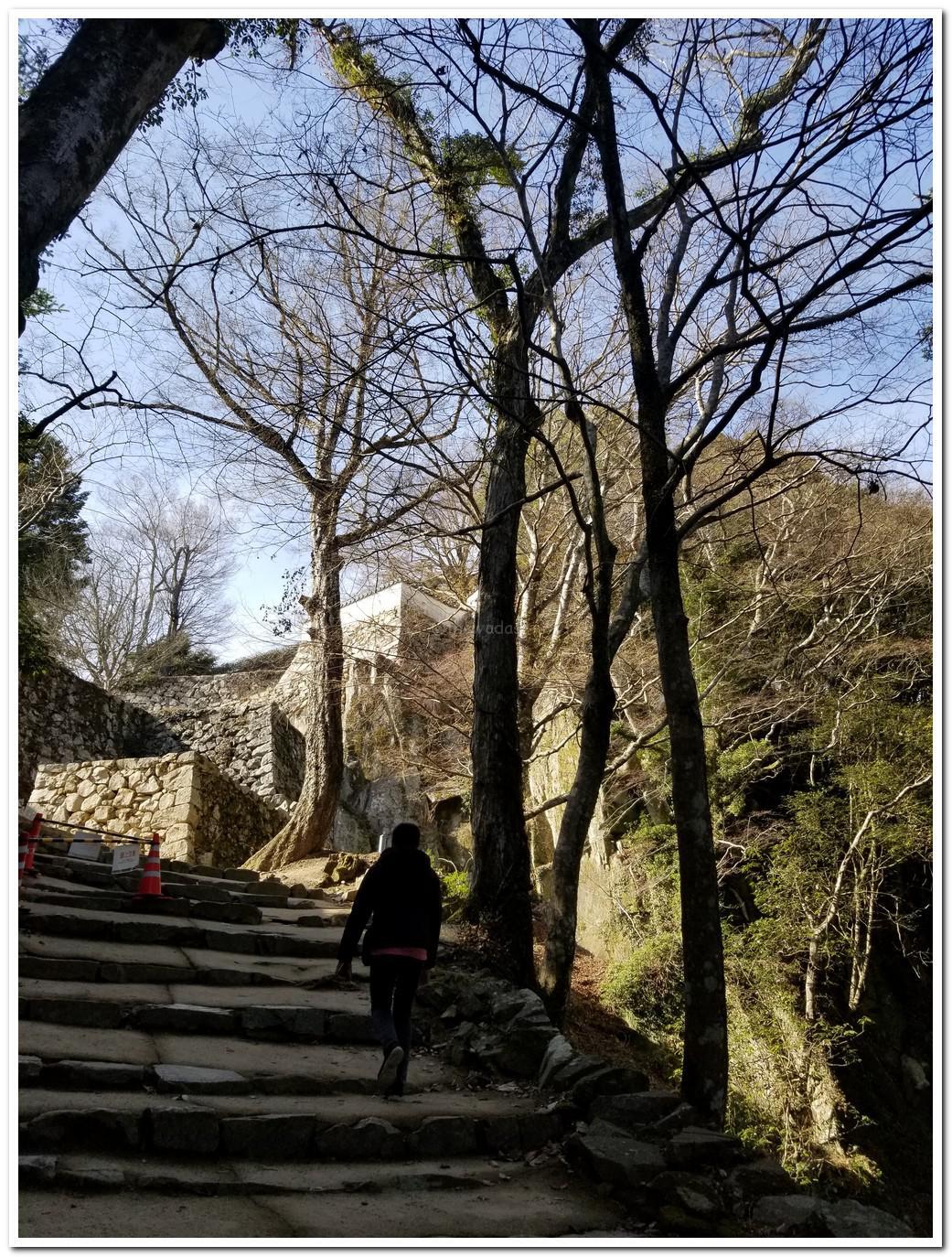 Bitchu Matsuyama Castle (Takahashi City)